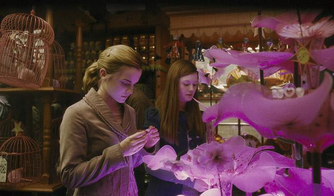 Via http://vignette4.wikia.nocookie.net/harrypotter/images/2/29/Hermione_and_Ginny_at_the_Weasley's_Wizard_Wheezes_Shop.JPG/revision/latest?cb=20090706234420