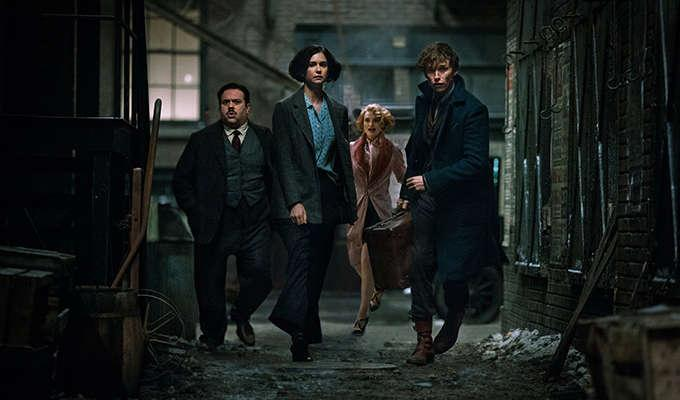 Via https://fsmedia.imgix.net/5d/56/77/9e/49f5/4720/9248/9a8fb538bed0/newt-scamander-and-the-gang-of-fantastic-beasts-and-where-to-find-them.jpeg