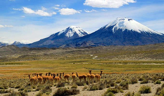Via http://www.planetware.com/photos-large/CHI/chile-top-attractions-lauca-national-park.jpg