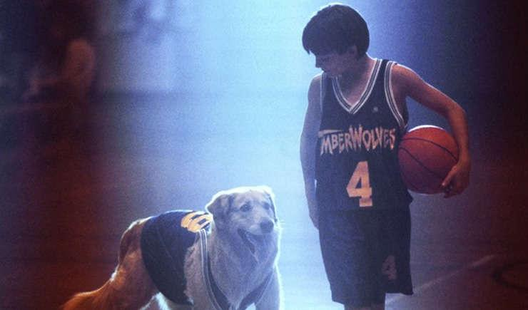 Via https://www.mandatory.com/images/stories/2011/Film/The%20Series%20Project/Air%20Bud/Air_Bud_1_on_the_court.jpg
