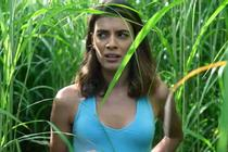 (REVIEW) In the Tall Grass (2019)
